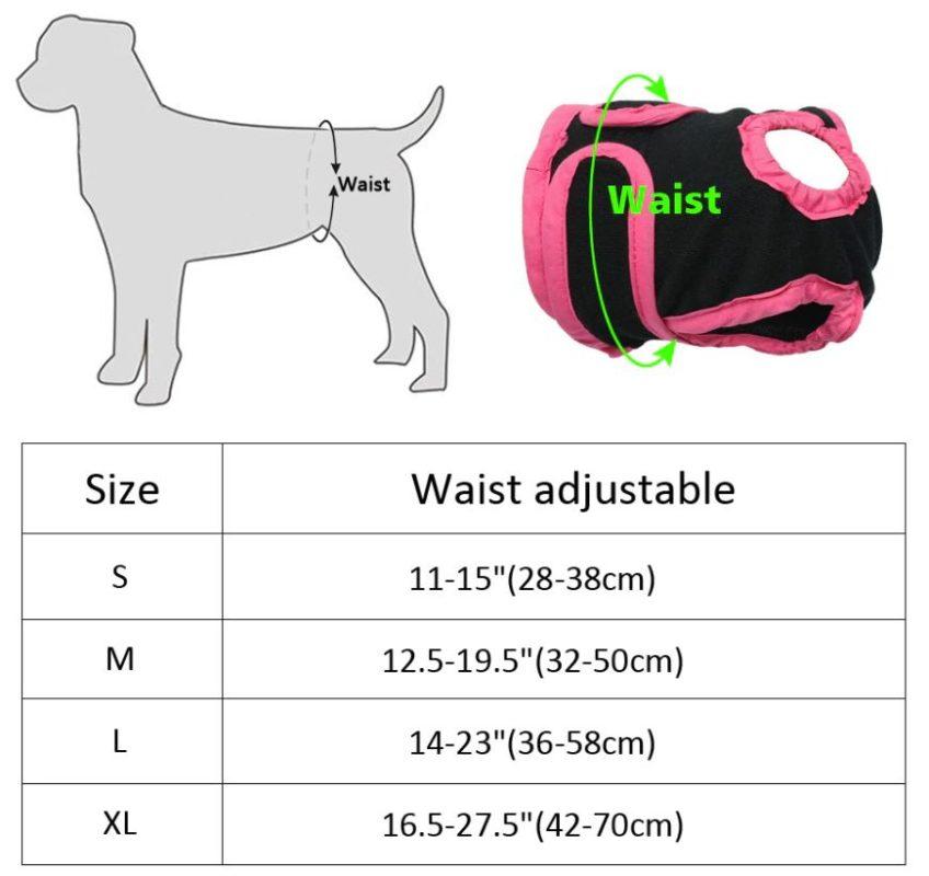 culotte de chien - chaleurs chez la chienne tailles