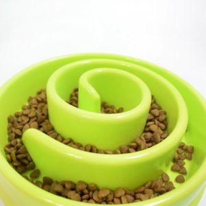 gamelle anti glouton chien mange trop vite croquette