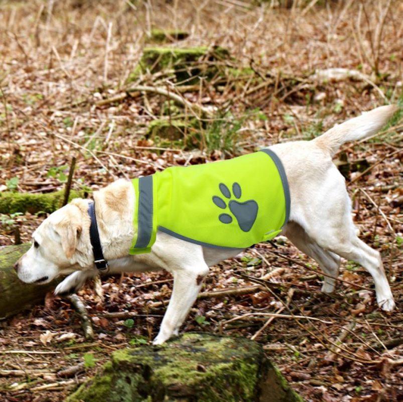 gilet jaune pour chien sécurité patte de chien 2