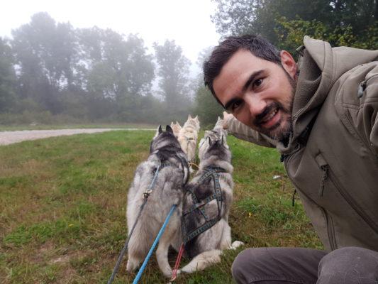 equipement accessoires sport chien attelage