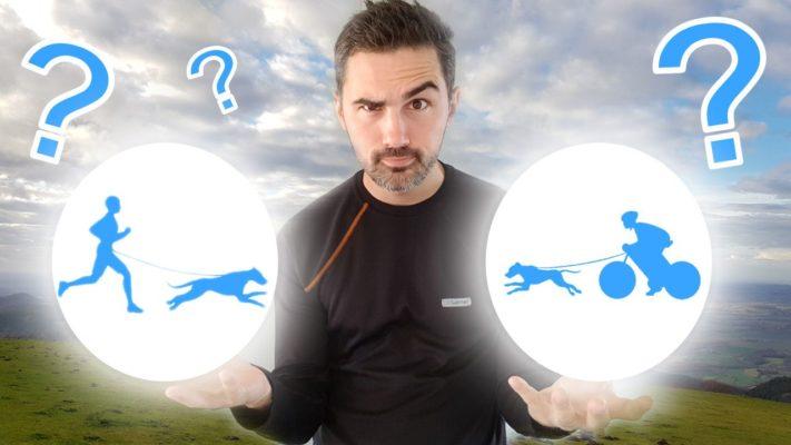 canicross-ou-canivtt-lequel-choisir-quel-sport
