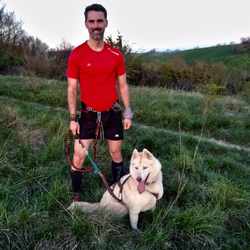 equipement canicross laisse baudrier harnais chien
